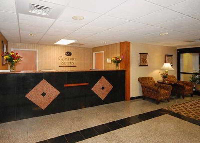 Comfort Suites Arena