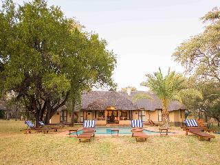 Mziki Safari Lodge - Pool