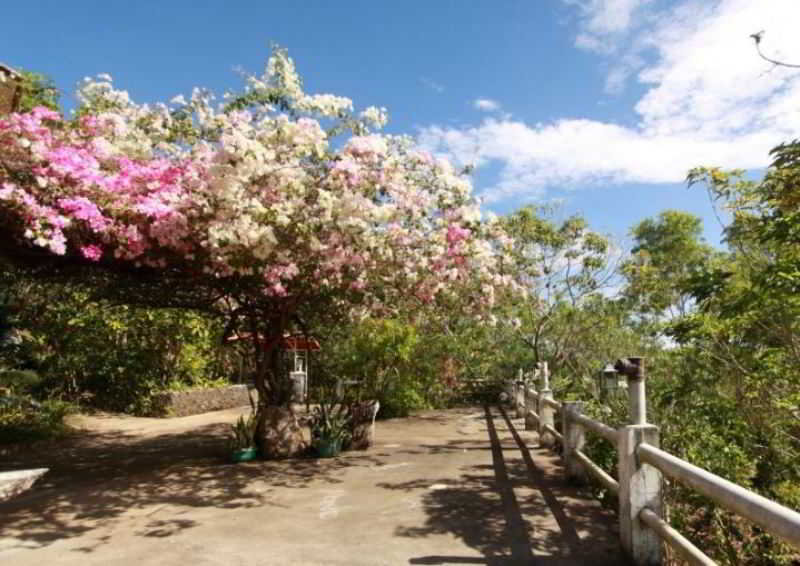 Bantayan Island Nature Park & Resort - Sport