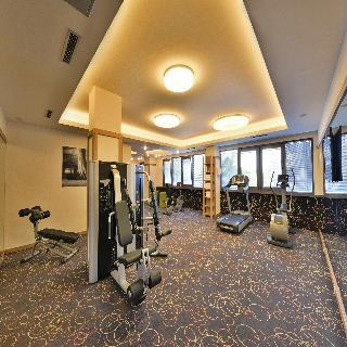 Suite Hotel Sofia - Sport
