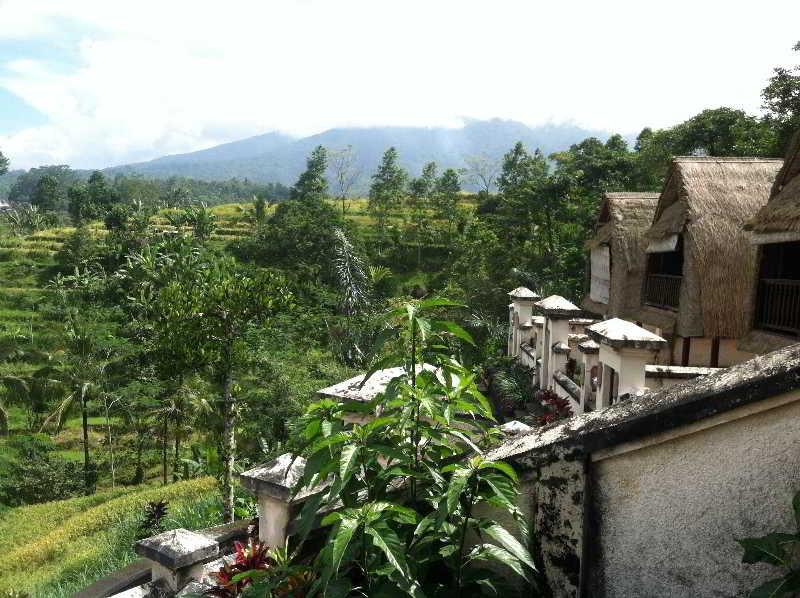 Soka Jatiluwih Villas, Desa Jatiluwih, Tabanan,…