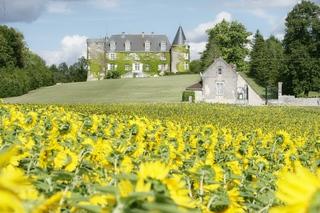 Chateau De La Cote, Biras, Lieu-dit La Cote,…