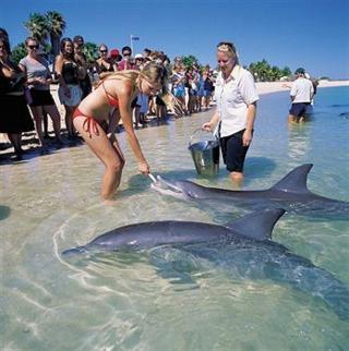 Monkey Mia Dolphin Resort