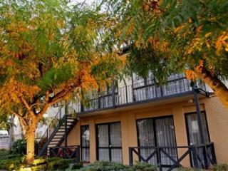 Christchurch Hotels:Avalon Motels