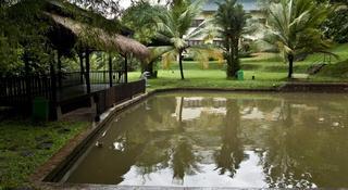 Kota Bukit Indah Plaza, Block L - Kota Bukit Indah…