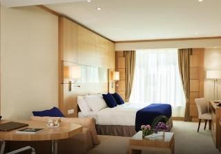 Book Warwick Hotel Dubai Dubai - image 9