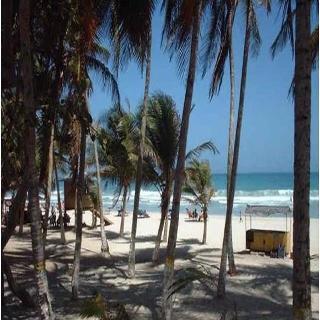 Golden Paradise, Playa El Agua, Boulevard…
