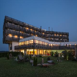 Falkensteiner Hotel & Spa Bad Leonfelden - Generell