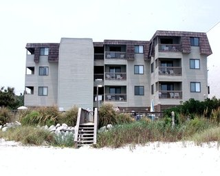 Ocean Forest Colony