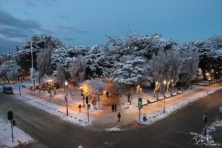 Plaza Punta Arenas, Jose Nogueira,1116