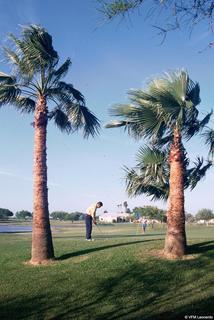 Rancho Viejo Resort & Cc