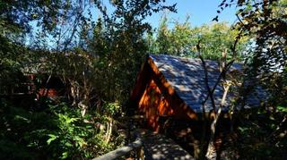 Lodge Roche Tamarin…, Chemin Boeuf Mort,142