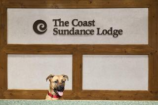 Coast Sundance Lodge, Creekside Way,3160