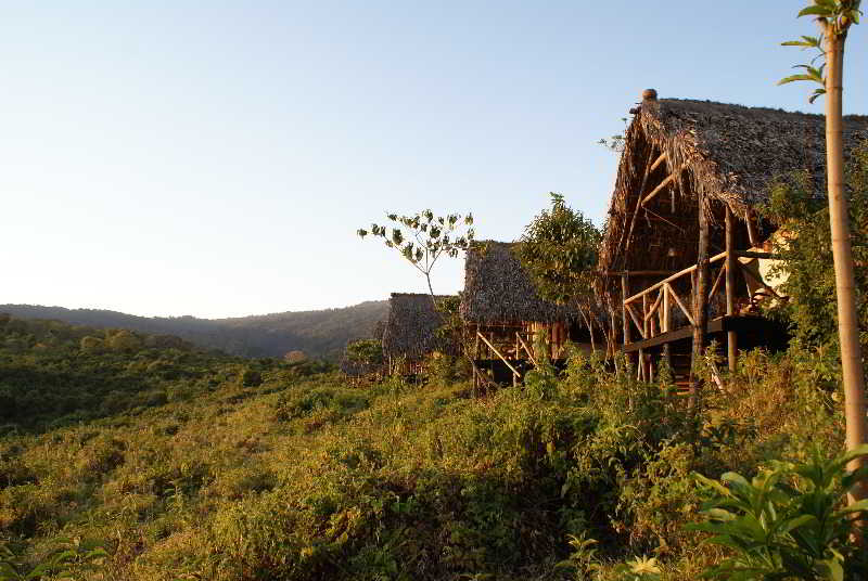 Crater Forest Tented…, Arusha - Tanzania,11297