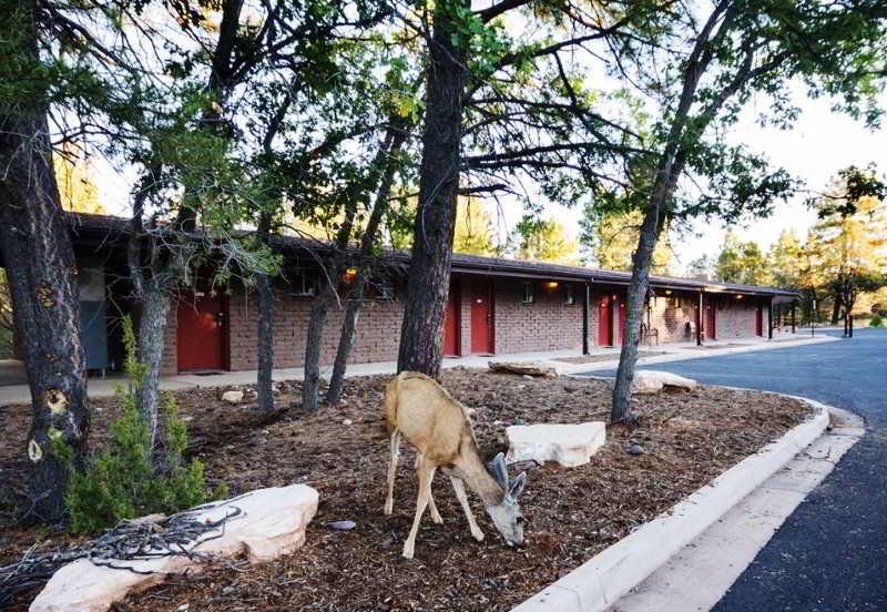 Yavapai Lodge - West & East