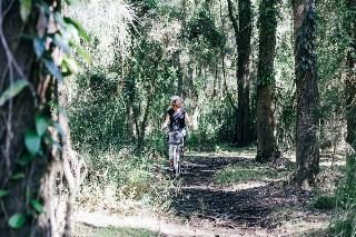 Paperbark Camp, 571 Woollamia Road,