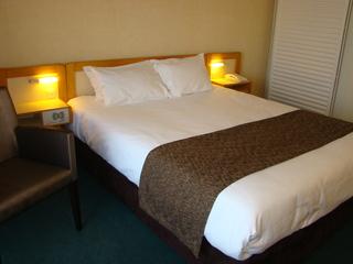 Book Brit Hotel du Lac Dax Les Thermes - image 5