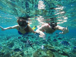Tropica Island Resort…, Malolo Island, N/a Malolo,…
