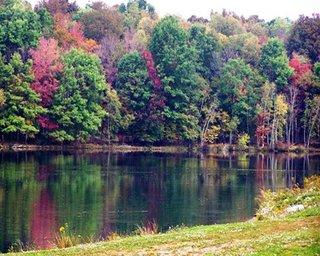 Wolf Run Manor At Treasure Lake