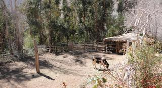 Eco Lodge Casona Distante, Fundo Distante S/n, Alcohuaz,…
