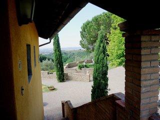 Montereggi No. 7
