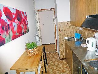 Massagno - One Bedroom, Via Rodrée,