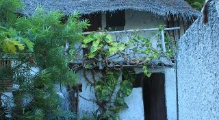 Nyamkwi White Sands, Jambiani, Zanzibar Island,111111