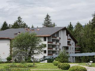 Waldhaus Flims - Chalet…, Via Dil Parc,3