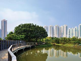 Cozi Wetland, Tin Sau Road, Tin Shui Wai,…