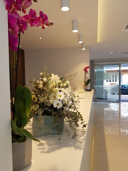 Fotos Hotel Perla