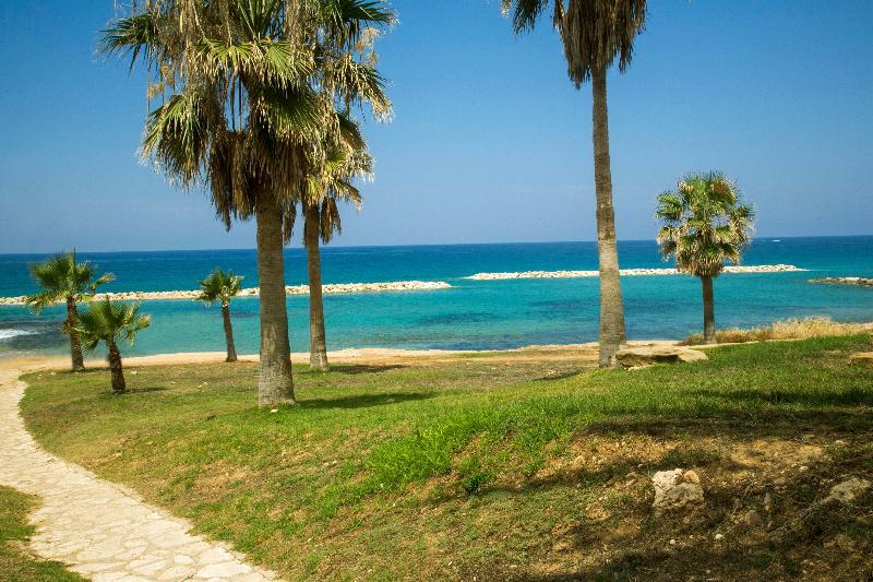 Beach Venus Beach