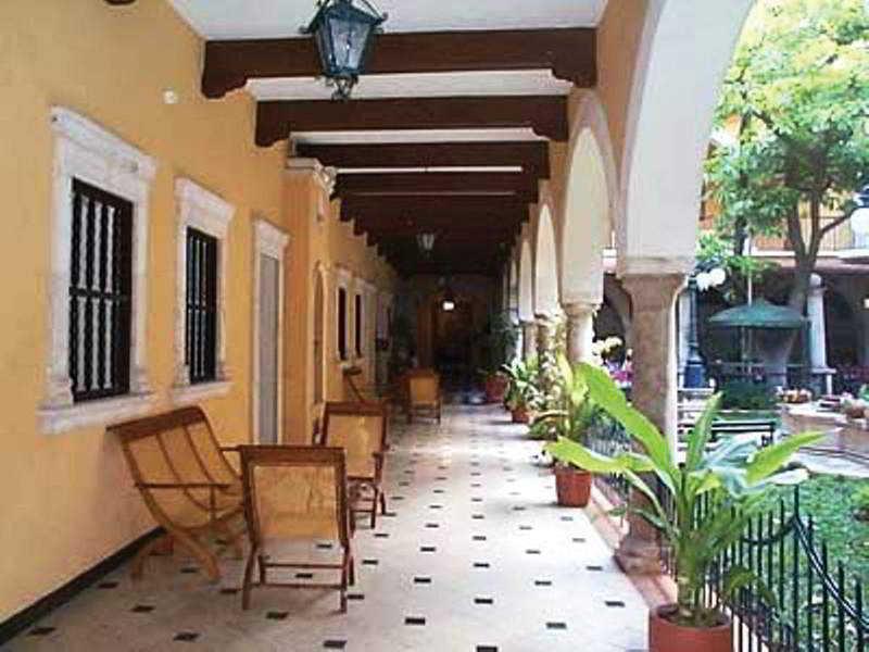 Terrace Caribe