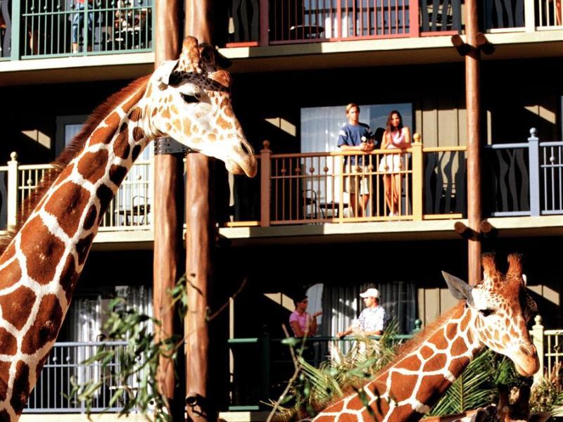 Hotel Disney Animal Kingdom Lodge Foto 10
