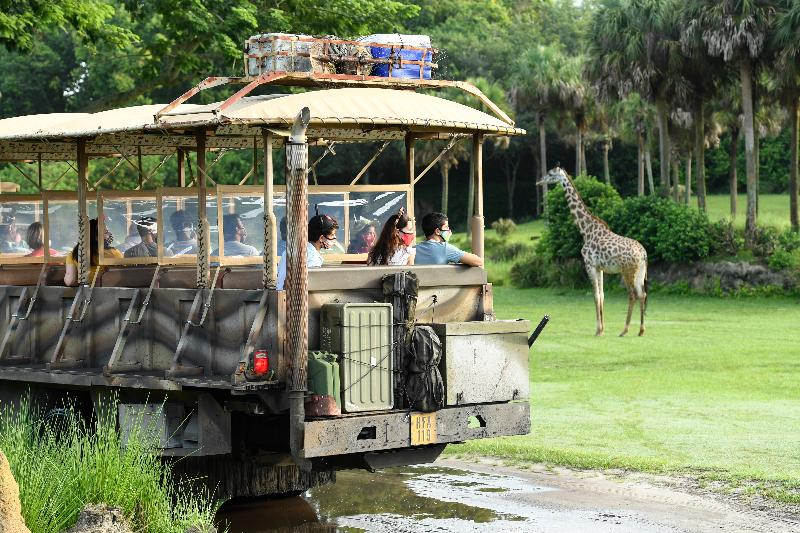 Hotel Disney Animal Kingdom Lodge Foto 9
