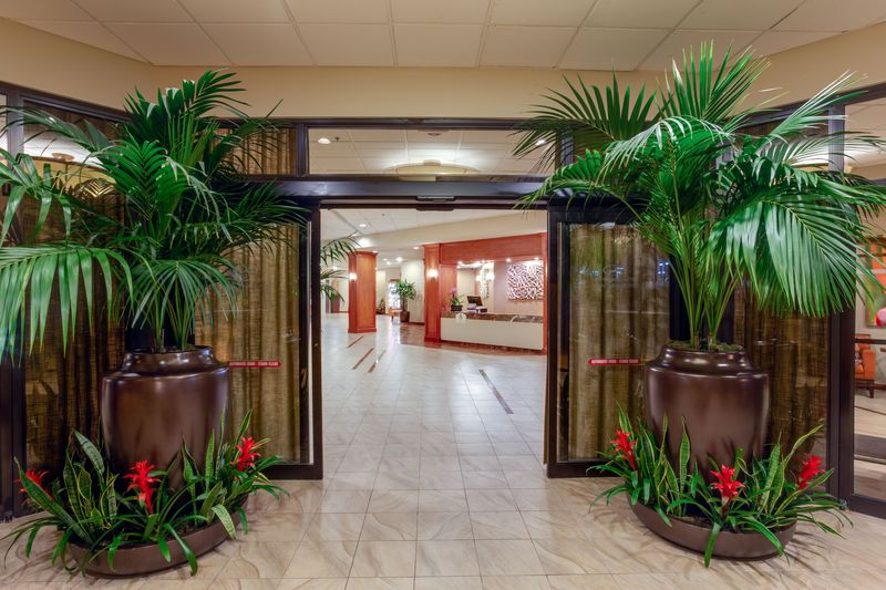Lobby Crowne Plaza Miami Airport