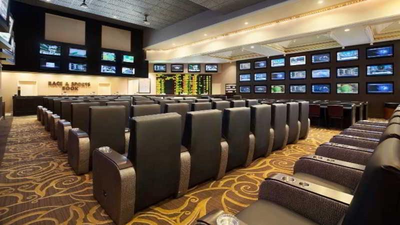 Sports and Entertainment Flamingo Las Vegas