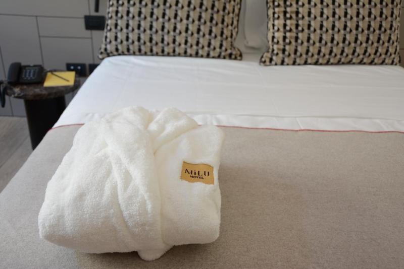 General view Hotel Milu