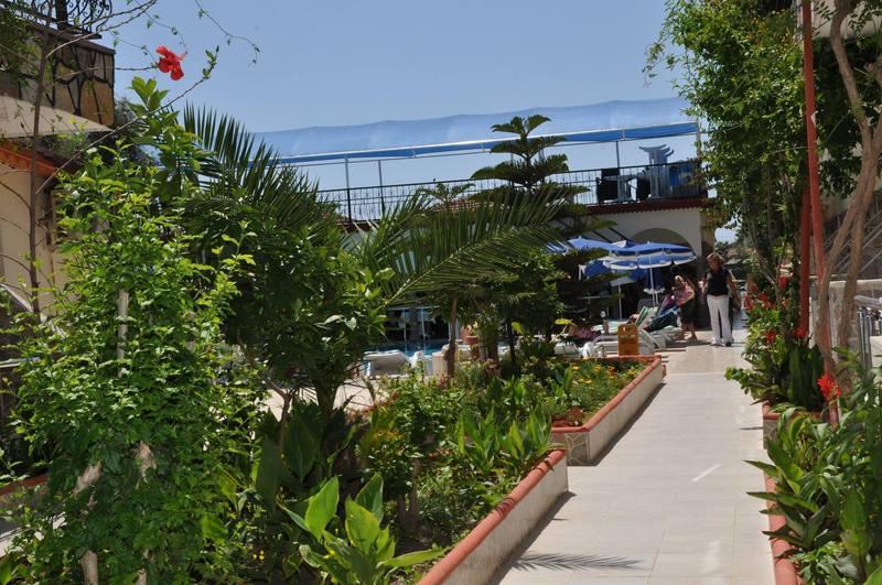 Terrace Side Sunberk