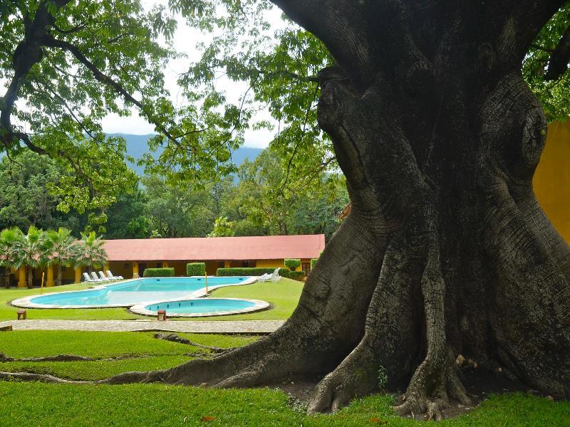 Pool Mision Conca
