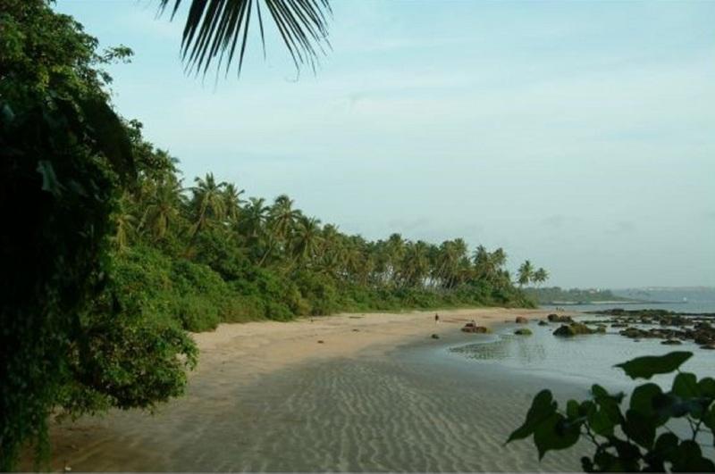 Beach Bambolim Beach Resort
