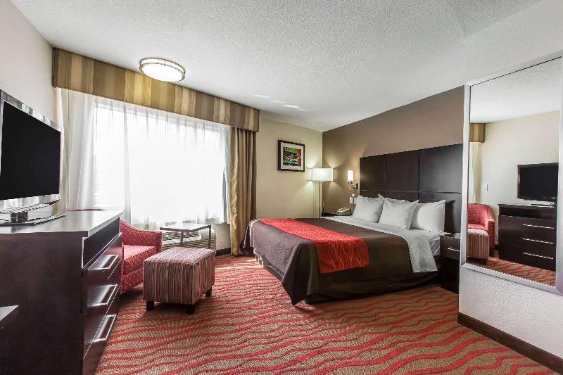 Comfort Inn, Los Angeles - Room - 15