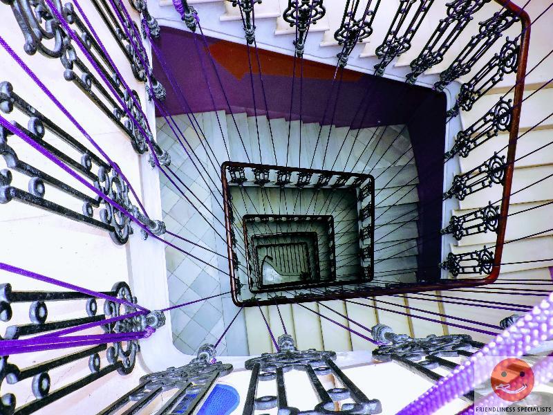 Fotos Albergue Purple Nest