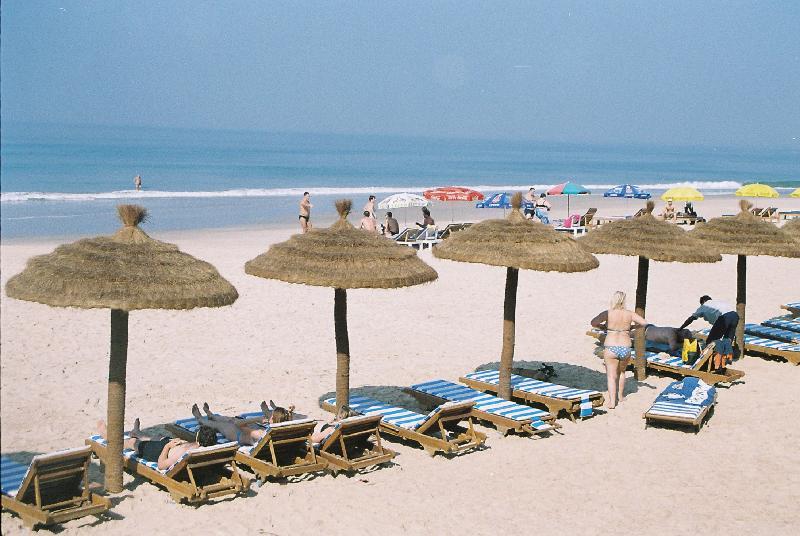 Beach Coconut Grove