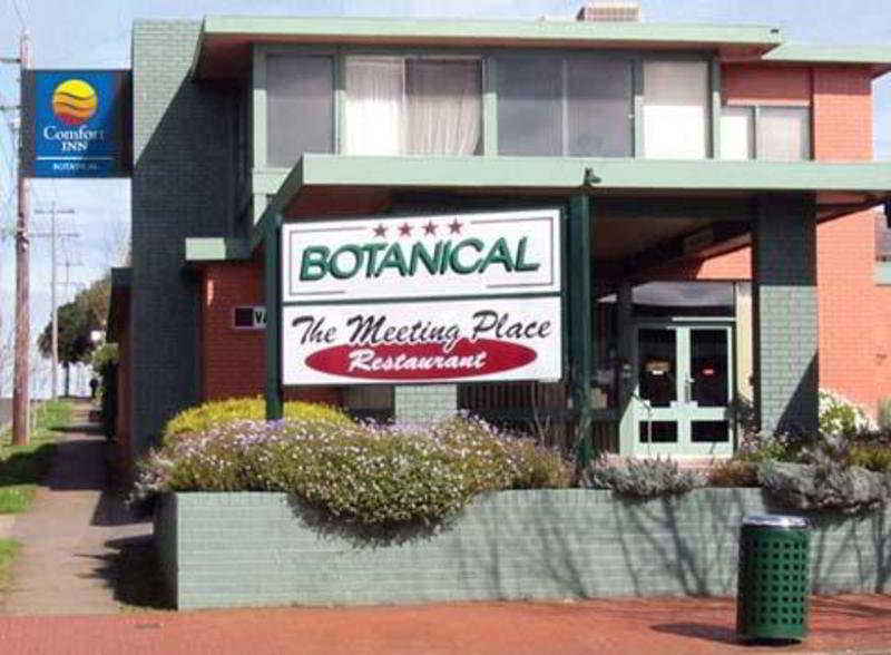 General view Comfort Inn Botanical