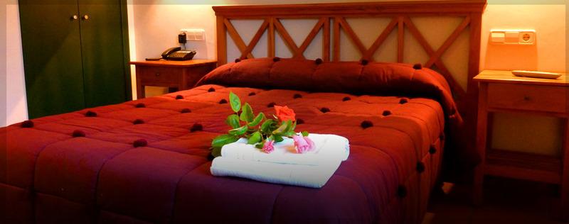 Room Hotel Rural Duerming Aldea Duero