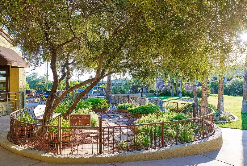 Restaurant Hilton Tucson El Conquistador Golf & Tennis Resort