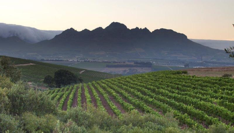 General view Asara Wine Estate