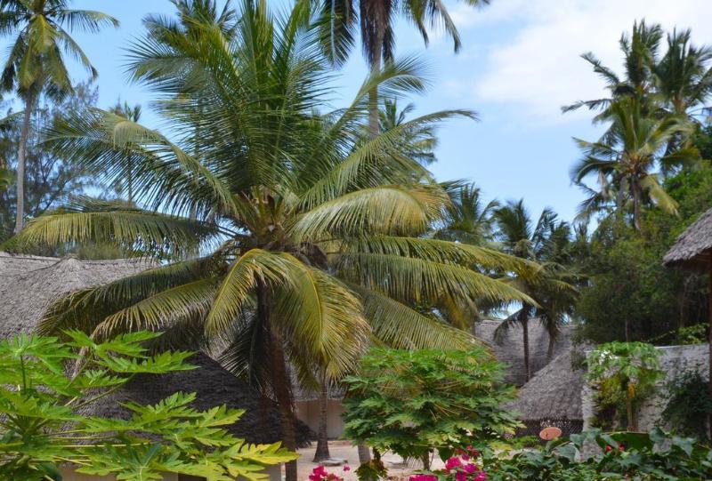 General view Ora Resort Coral Reef