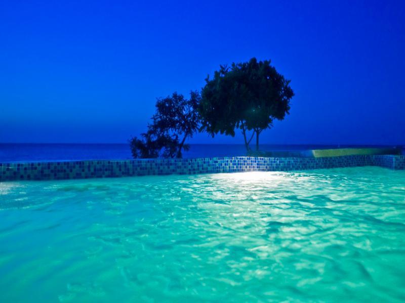 Pool My Blue Hotel