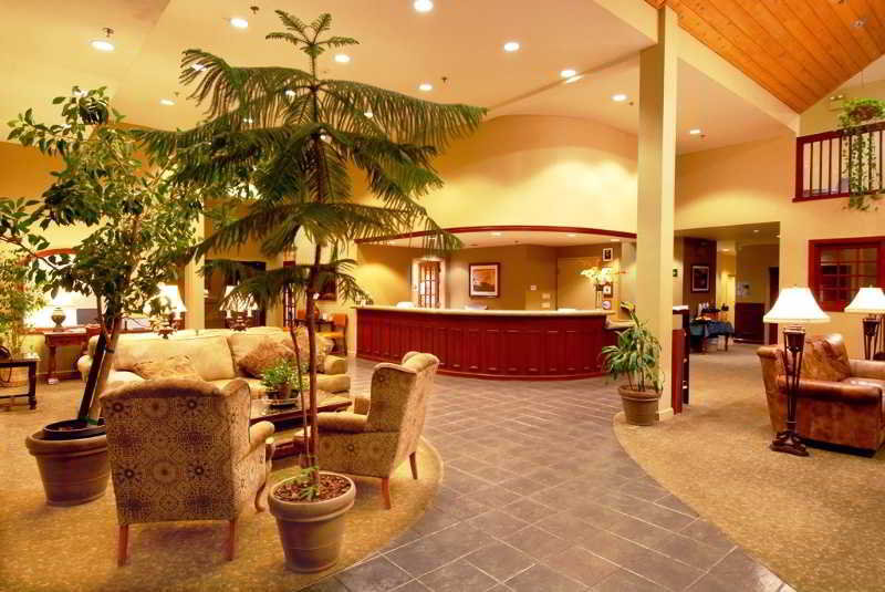 Lobby Forest Suites Resort